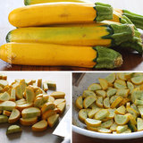 Easy-summer-squash-recipe-jpg