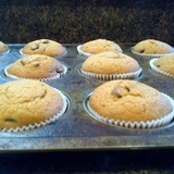 Pumpkin%20chocolate%20chip%20muffins