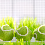 Tennis-ball-spinach-cakes