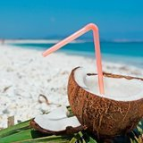 Coconut-rum-drinks