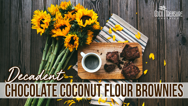 Decadent Chocolate Coconut Flour Brownies of Coco Treasure Organics - Recipefy